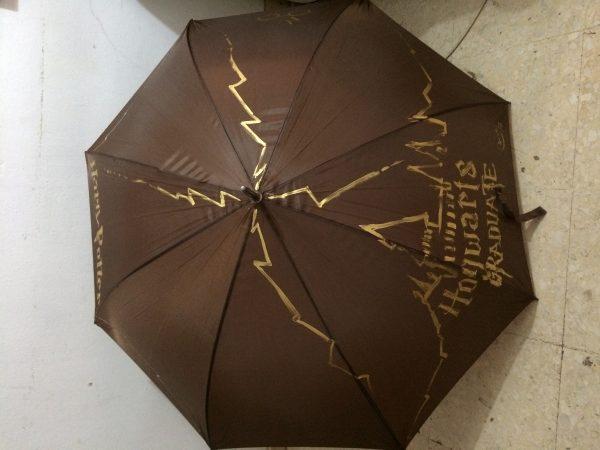 Paraguas pintado.